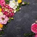 عکس با کیفیت بسیار زیبا گل های زرد و گل های صورتی و سفید در کنار یکدیگر به شکل قاب در زمینه ی خاکستری